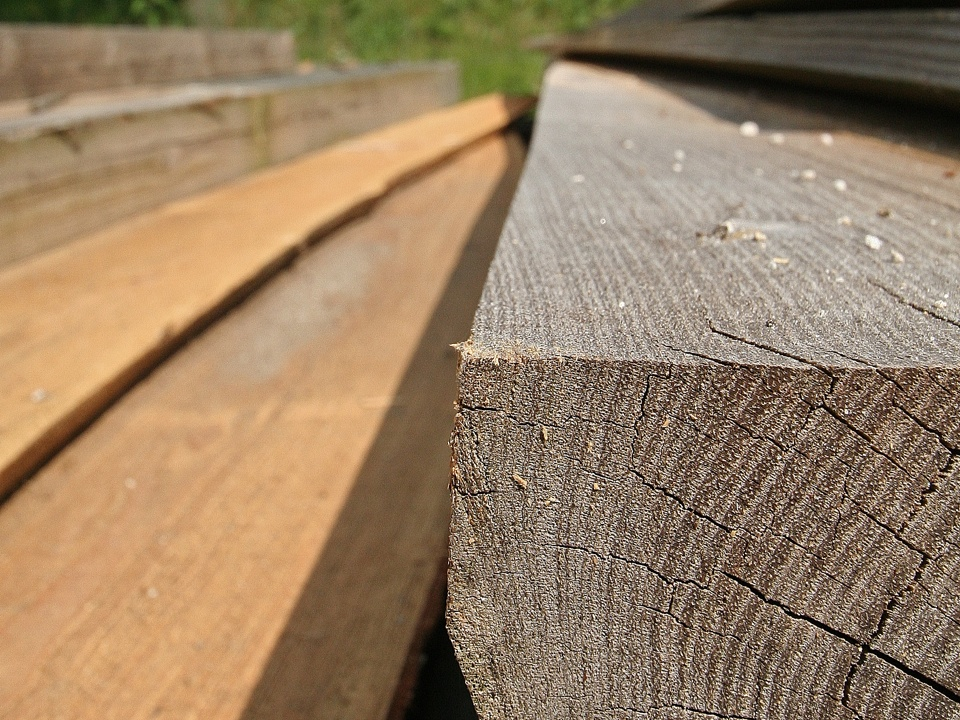 hout IMG_8801